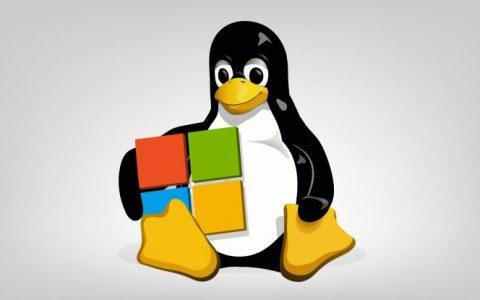 如何在Debian Linux上设置和配置网桥