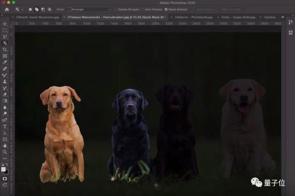 一键抠出细密å'ä¸ï¼Œè¿™æ˜¯Adobe最新的AI抠图算法,å³å°†ä¸Šçº¿Photoshop 2020